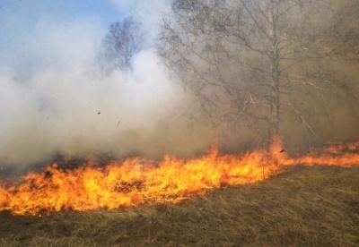 Foto av en pågående gräsbrand.
